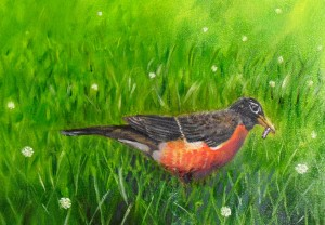 Robin,original oil painting of Michigan bird