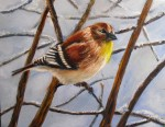 Oil painting of a finch in wintertime, last stage in how to paint a bird with oils paints